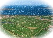 Luftfoto-AaGK1-jul